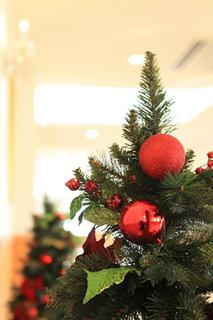 クリスマスツリー 北欧