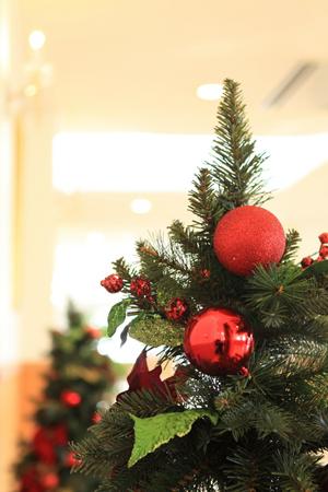 Christmas20tree20(2)-13d68.jpg