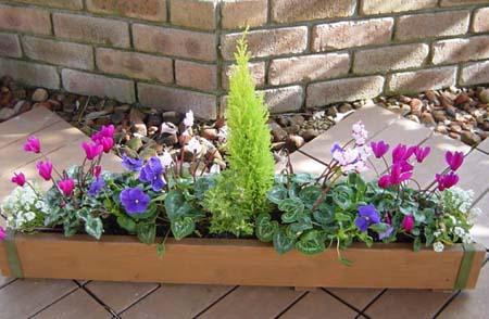 planter (2).jpg